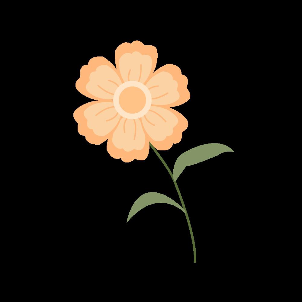 꽃 일러스트 PNG