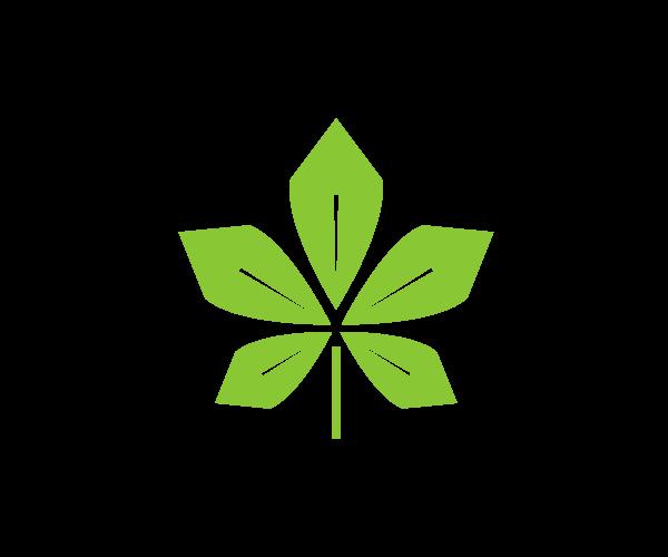 나뭇잎 일러스트 도안