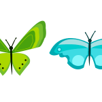 나비 사진 일러스트