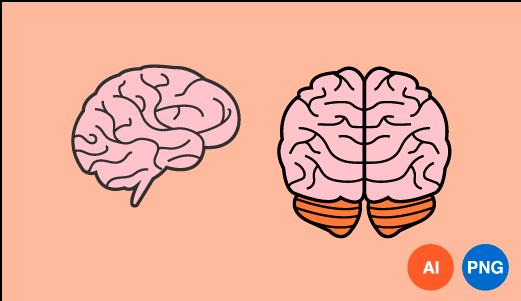 뇌 일러스트 이미지 디자인