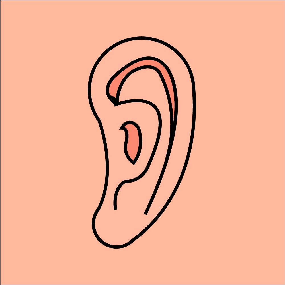 귀 PNG
