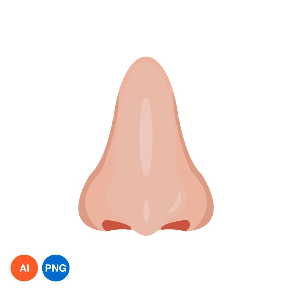 코 PNG