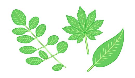 나뭇잎 디자인
