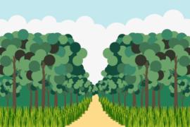 숲 디자인